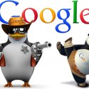 How Google Panda Affects A Website & Role of SEO Service Provider